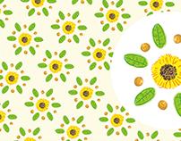 Girassol de setembro / Sunflower in Setember