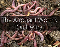 The Arrogant Worms Orchestra