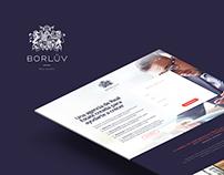 Borluv - landing Page Concept Design
