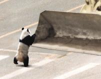WWF - TANK PANDA