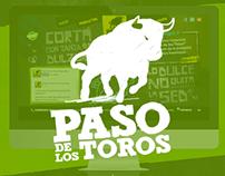 Paso de Los Toros Arg. Website