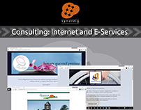 Consulting: Internet and E-Services