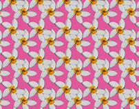 Estampa flor manga rosa