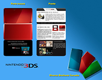 Nintendo DS Brochure