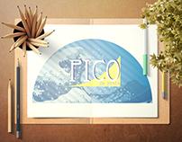 Logo Pico da Praia
