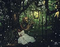 The Tree Man & The Fairy.