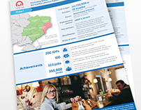 UNDPin Ukraine project report infographic: