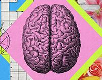 Brain configuation