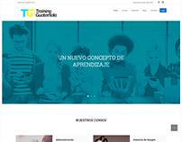 Diseño y programación del portal Web de Training502