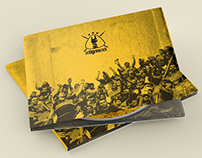 CAPA DE CD // Os Tigres Rock
