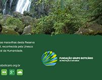 Email MKT - Fundação Boticario