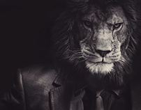 Boss Lion- Photomanipulation