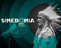 SINEDONIA / Estudio de grabación