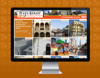 Website Baralt for Daily Panorama