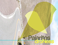 Pajaritos Droness