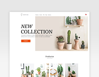kak/tus ~ Web design