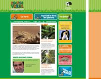 Web Recreo Verde