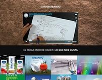Diseño Web: Solución Gráfica
