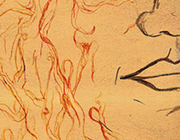 Imagens da Amazônia - Capa de livro