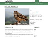 Ficha Animal