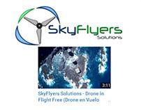 Drone in Flight Free (Drone en Vuelo Libre)