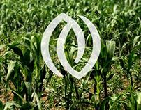 NUTRIFERTIL / Logotipo / Identidad Corporativa