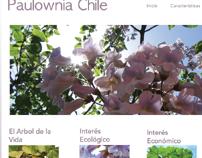 Página Web Paulownia Chile