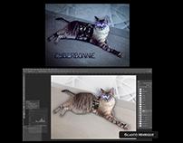 Manipulação - Photoshop
