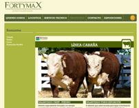 Fortymax