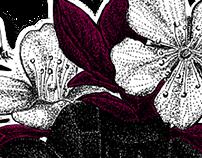 Puntillismo | Pointillism