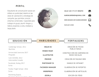 CV Karen Carreño