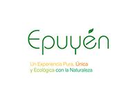 Diseño de marca Epuyén
