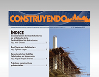 Construyendo Soluciones - Monthly Report