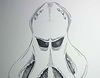 Illustration Octopus