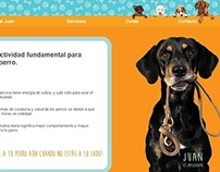Juan El Paseador - Juan The Dog walker. Website.