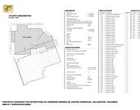Proyecto Centro Comercial Estructura Concreto Singular