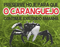 Andada do Caranguejo