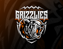 High Country Grizzlies | Identity & Branding