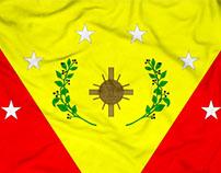 Bandera del Municipio Guásimos