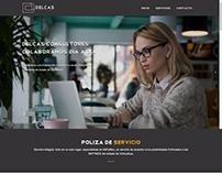 Landing Page - Delcas Consultores