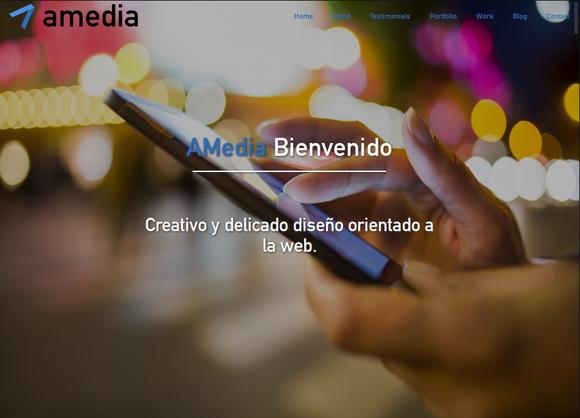 Desarrollo/Diseño de Landing Page (Wordpress)