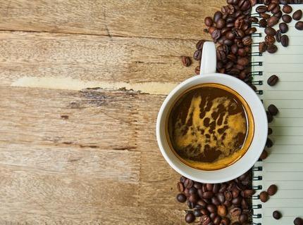 Artículo especializado con café (inglés o español)