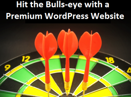 Increase traffic and sales with Premium WordPress