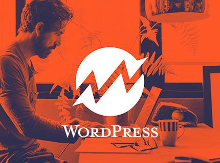 Site Wordpress institucional + Hospedagem