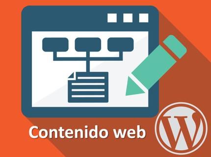 Paquete de creación de contenido para página web