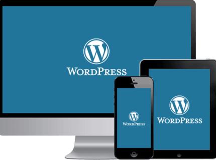 SEO, Sites, blogs e e-coomerce Wordpress