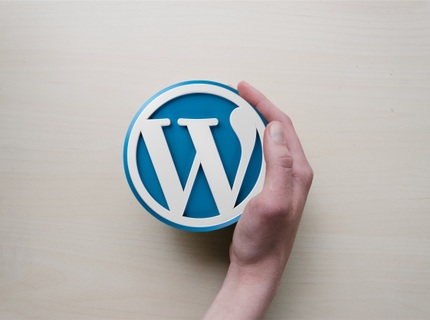 Sitio Web Premium WordPress Responsivo